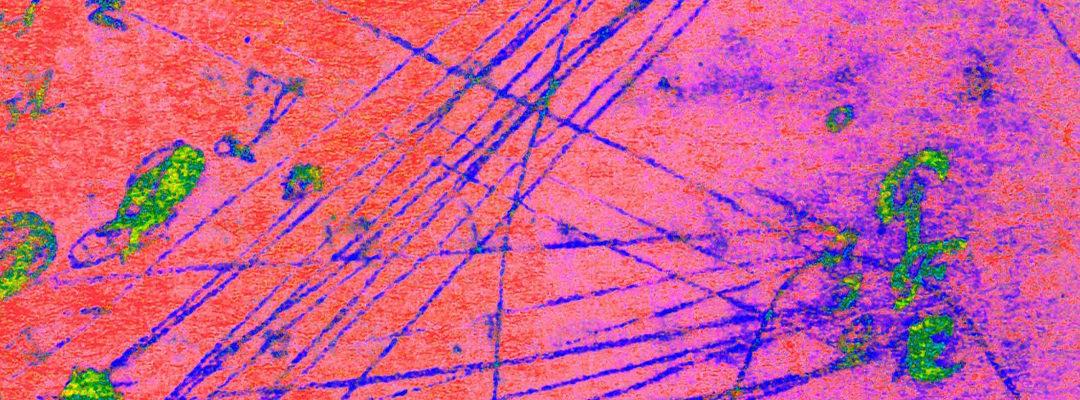 Multispektrális képalkotás (MSI): Egy fontos digitalizálási eszköz a 21. század számára